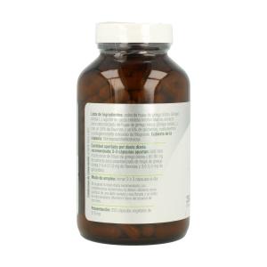 Ginkgo Biloba Plus – El Granero Integral – 250 cápsulas