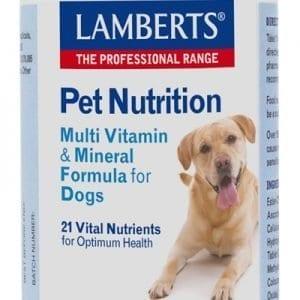 Multivitaminas y Minerales para perros – Lamberts – 90 Tabletas
